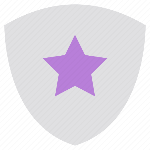guard, network, password, privacy, security, shield, star icon