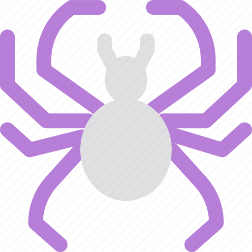 animal, guard, insect, network, privacy, security, spider icon