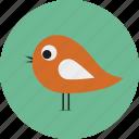 bird, halloween, owl icon icon