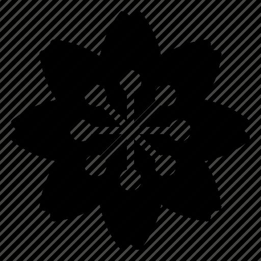 flower, leaf, leave, nature, park icon