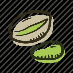 food, healthy, nut, pistachio, protein, snack icon
