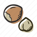 food, hazelnut, healthy, nut, protein, snack icon
