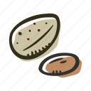 snack, food, nut, almond, healthy, protein icon