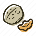 food, healthy, nut, nuts, protein, snack, walnut icon