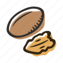 food, healthy, nut, pecan, protein, snack icon