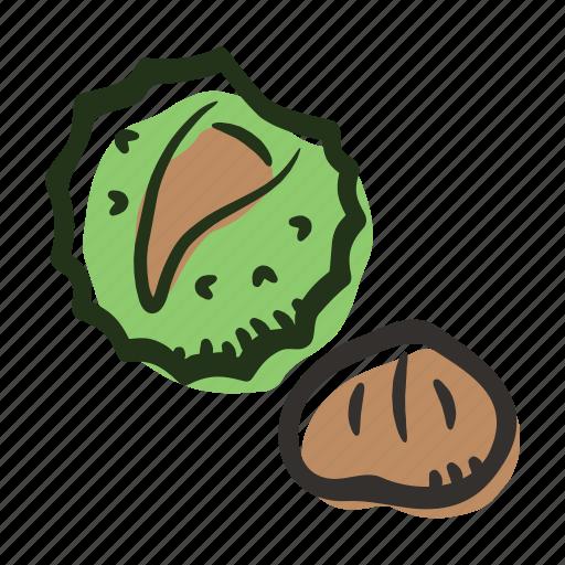chesnut, food, healthy, nut, protein, snack icon