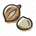 food, healthy, macadamia nut, nut, protein, snack icon