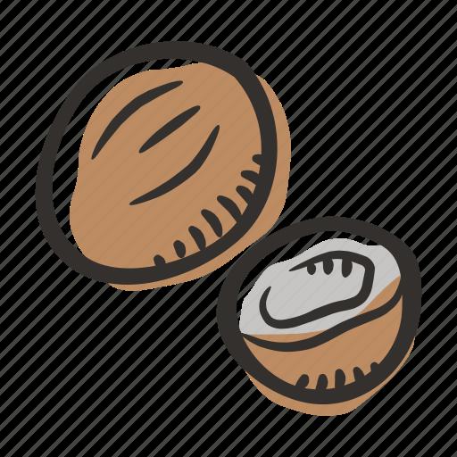 coconut, food, healthy, nut, protein, snack icon