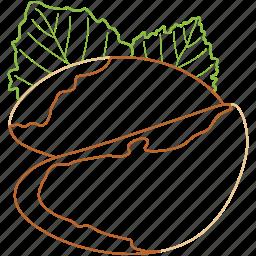 brazil nuts, food, healthy food, nuts, organic icon
