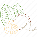chestnut, chestnuts, food, healthy food, nature, nuts icon