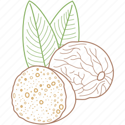 cake, food, healthy food, nutmeg, nuts, organic icon