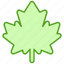 grape, green, leaf, leaves, plant, tree icon