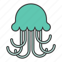 aquatic animal, jellyfish, ocean, sea icon