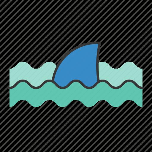aquatic animal, ocean, sea, shark icon