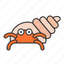 crab, hermit crab, ocean, sea icon
