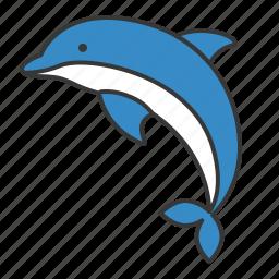 aquatic animal, dolphin, ocean, sea icon