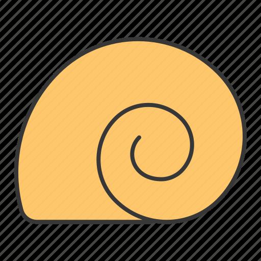ocean, shell, snail icon