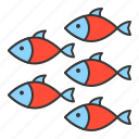 aquatic animal, fish, group of fish, ocean, shoal icon