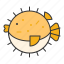 aquatic animal, fish, ocean, puffer fish icon