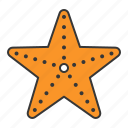 fish, ocean, ocean animal, star fish icon