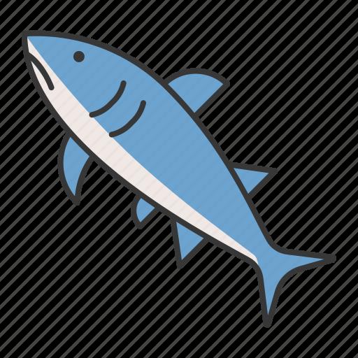 aquatic animal, fish, ocean, shark icon