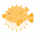aquatic animal, ocean, puffer fish, sea icon