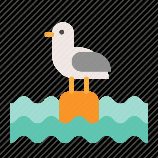 animal, bird, ocean, seagull icon