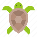 aquatic animal, ocean, sea, turtle icon