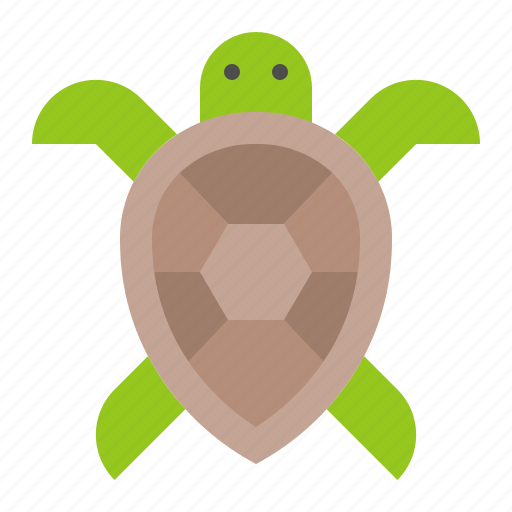 aquatic animal, ocean, sea, turtle icon