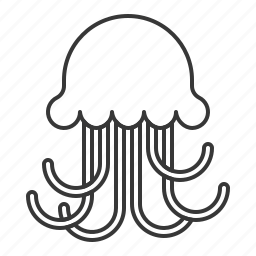 aquatic animal, jellyfish, life, ocean, sea icon