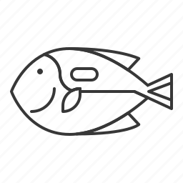 aquatic animal, fish, life, palette surgeonfish, sea, tropical fish icon