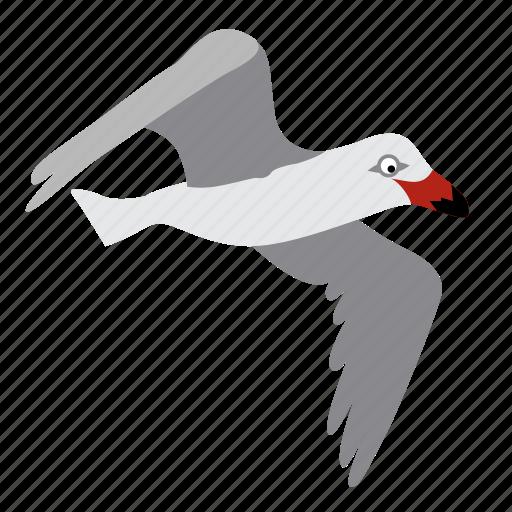 animal, bird, fly, flying, gull, herring, seagull icon