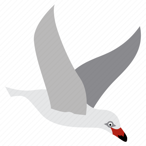 animal, bird, fly, flying, gull, herring, seagull icon
