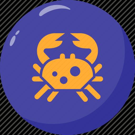 Aquatic, cancer, crab, hermit icon - Download on Iconfinder