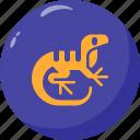 amphibian, lizard, reptile, reptilian icon