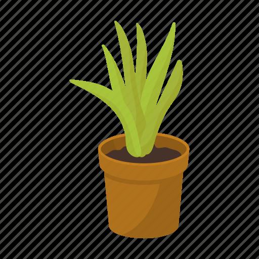cactus, equipment, indoor, interior, office, plant, pot icon