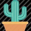 cactus, decoration, interior, nature, plant, pot icon