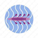 canoe, kayak, olympic, rowing, sport, summer, team sport icon