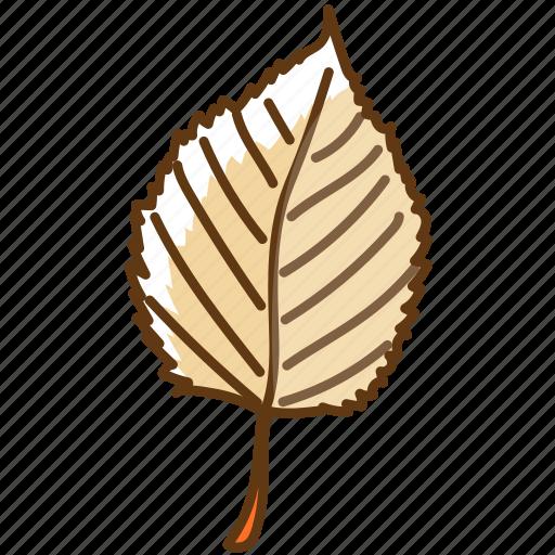 autumn, cold, fall, leaf, season, tree icon