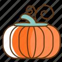 autumn, cold, fall, fruit, pumpkin, season, vegetable icon