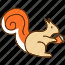 animal, autumn, cold, fall, nature, season, squirrel