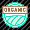 organic, cosmetic, cosmetics, makeup, palette, water