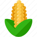 corn, food, harvest, health, meal, organic icon