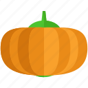 food, health, meal, organic, pumpkin, vegetable icon