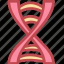 biology, dna, genetic, genetics, molecule, science