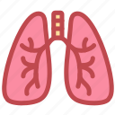 anatomy, breath, health, lung, lungs, medical, organ icon