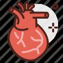 body, health, hearth, human, medical icon
