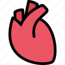 body, doctor, heart, organ, surgery, treatment icon