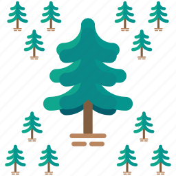 ecology, nature, outdoor, pine, travel, tree icon