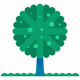 ecology, nature, outdoor, rounded, travel, tree icon